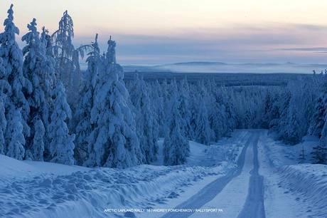 arctic_16_2